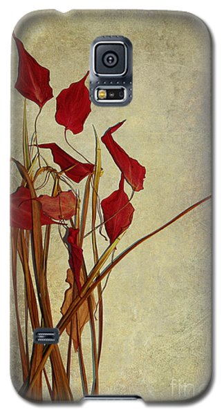 Nature Morte Du Moment Galaxy S5 Case