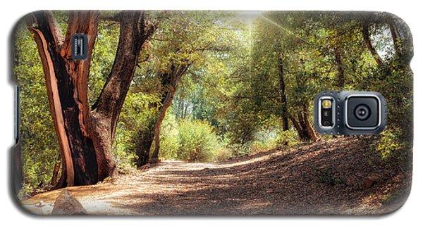 Nature Trail Galaxy S5 Case