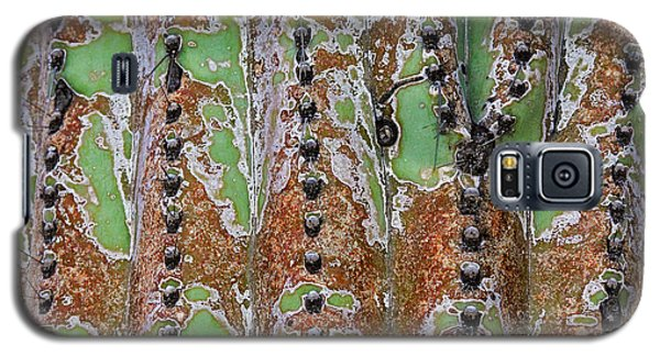 Nature's Abstract Galaxy S5 Case