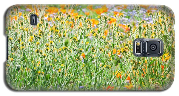 Nature's Artwork - California Wildflowers Galaxy S5 Case