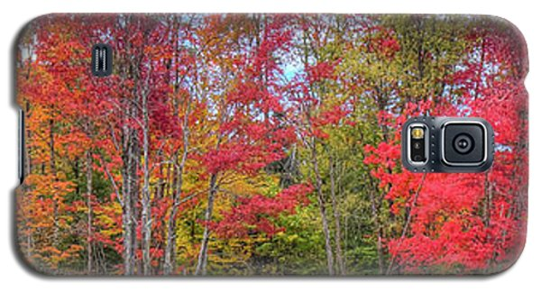 Galaxy S5 Case featuring the photograph Natures Autumn Palette by David Patterson