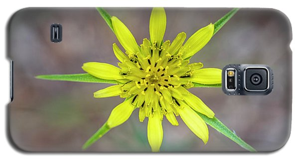 Nature's Compass Galaxy S5 Case