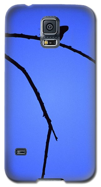 Natures Elegance Galaxy S5 Case