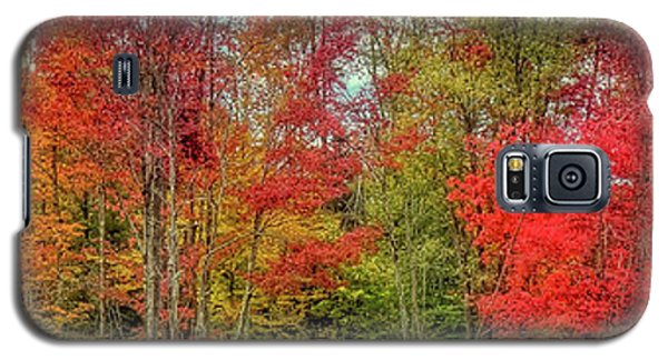 Galaxy S5 Case featuring the photograph Natures Fall Palette by David Patterson