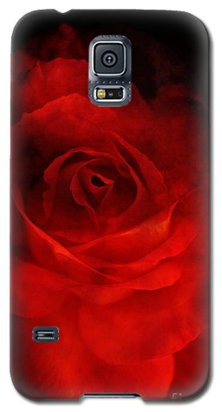 Natures Flame Galaxy S5 Case by Stephen Mitchell