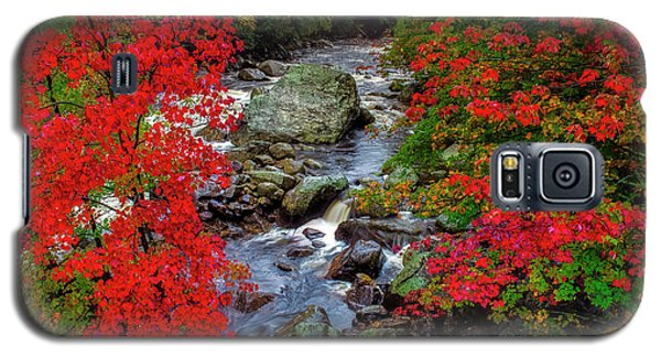Natures Frame Galaxy S5 Case