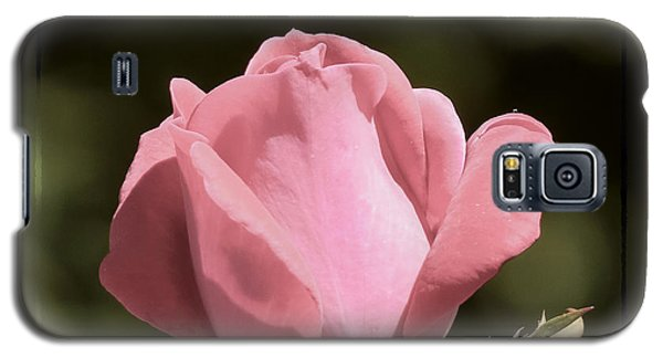 Galaxy S5 Case featuring the photograph Nature's Gems by Brenda Bostic