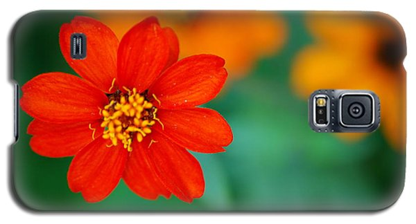 Galaxy S5 Case featuring the photograph Nature's Glow by Debbie Karnes