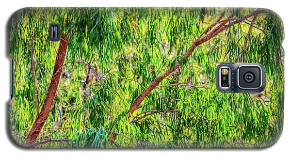 Galaxy S5 Case featuring the photograph Natures Greens, Yanchep National Park by Dave Catley