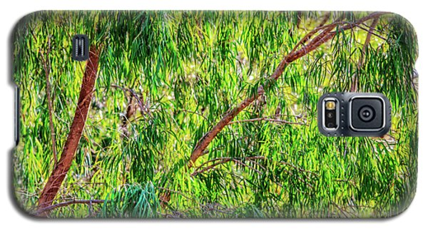 Natures Greens, Yanchep National Park Galaxy S5 Case by Dave Catley