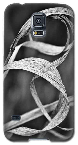 Natures Knot Galaxy S5 Case by Monte Stevens