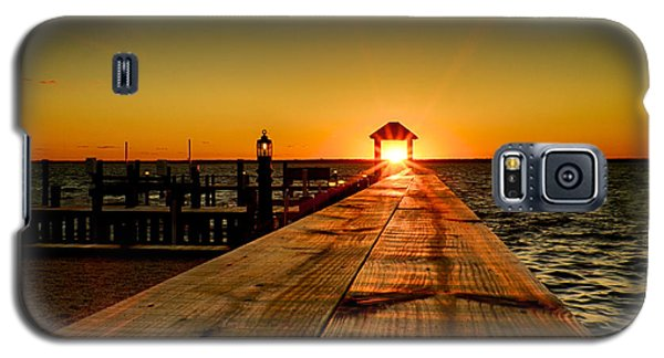 Nature's Lantern Galaxy S5 Case by Mark Miller