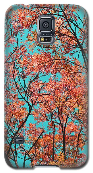 Galaxy S5 Case featuring the photograph Natures Magic - Orange by Rebecca Harman