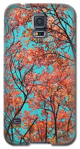 Natures Magic - Orange Galaxy S5 Case by Rebecca Harman