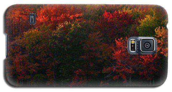 Nature's Palette Galaxy S5 Case