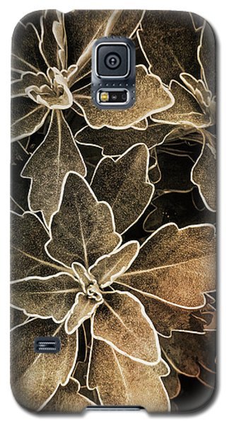 Natures Patterns Galaxy S5 Case