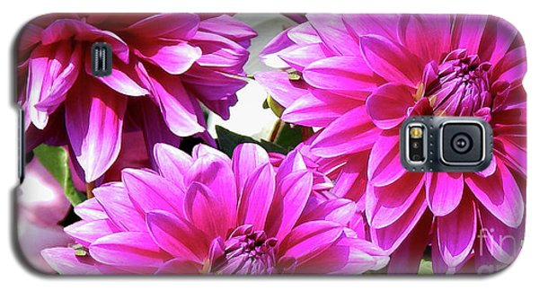 Natures Perfume Dahlias Red Tones Galaxy S5 Case