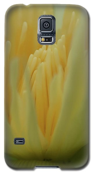 Natures Reflection Galaxy S5 Case