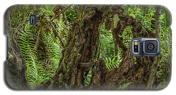 Nature's Sculpture Galaxy S5 Case