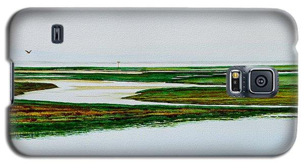 Nauset Osprey Galaxy S5 Case