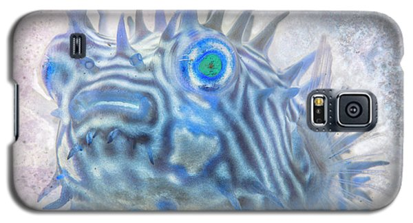Galaxy S5 Case featuring the photograph Nautical Beach And Fish #12 by Debra and Dave Vanderlaan