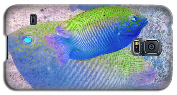 Galaxy S5 Case featuring the photograph Nautical Beach And Fish #3 by Debra and Dave Vanderlaan