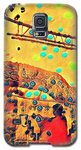 Navajo Woman Weaving 1 Galaxy S5 Case