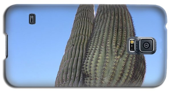 Wickenburg Saguaro  Galaxy S5 Case