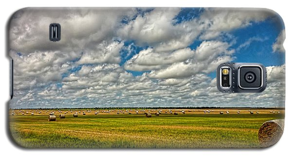 Nebraska Wheat Fields Galaxy S5 Case