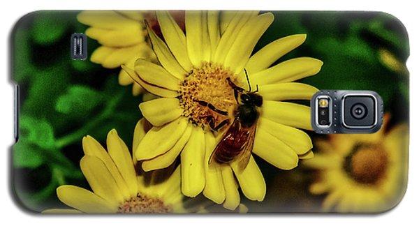 Nectar Gathering Galaxy S5 Case