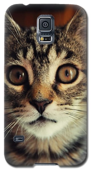 Need A Hug Galaxy S5 Case
