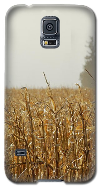 Neighborhood Pines Galaxy S5 Case