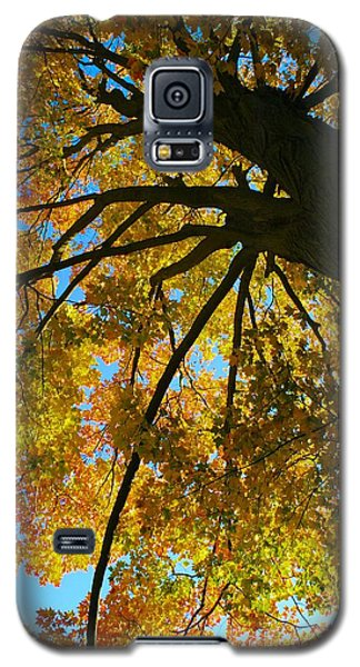 Galaxy S5 Case featuring the photograph Neighbor's Beauty by Polly Castor