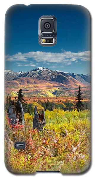 Nelchina Basin Galaxy S5 Case