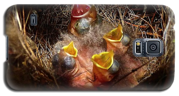 Nest With Brood Parasite Galaxy S5 Case