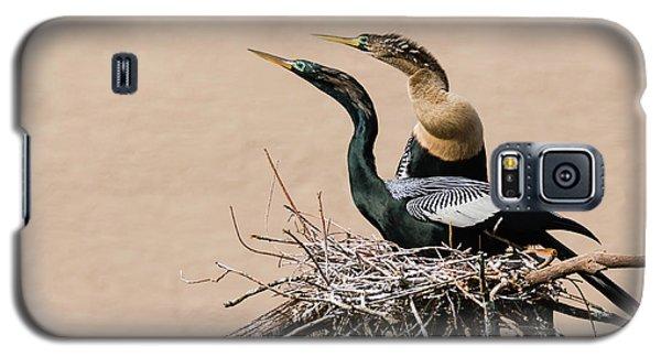 Nesting Anhinga Couple Galaxy S5 Case