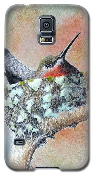 Nesting Anna Galaxy S5 Case by Phyllis Howard