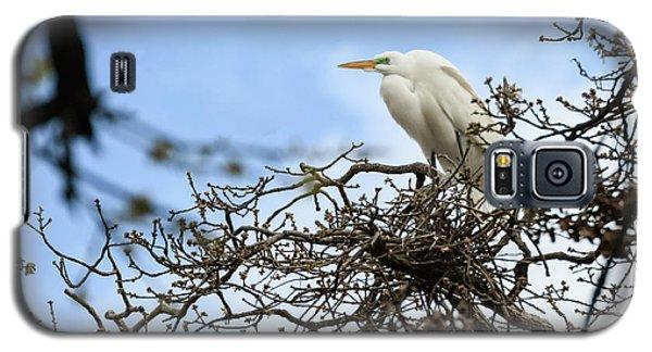 Nesting Egret Galaxy S5 Case