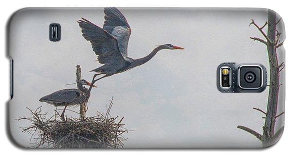 Nesting Great Blue Heron Galaxy S5 Case