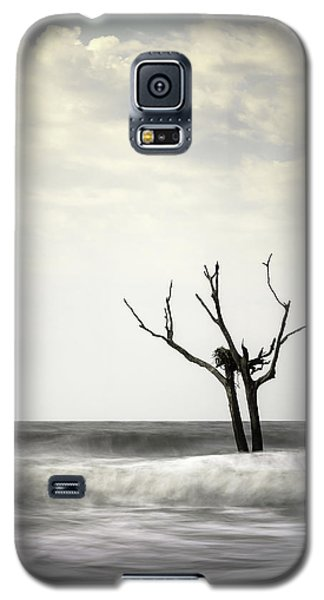 Nesting Galaxy S5 Case by Ivo Kerssemakers
