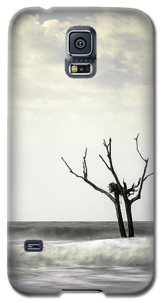 Osprey Galaxy S5 Case - Nesting by Ivo Kerssemakers