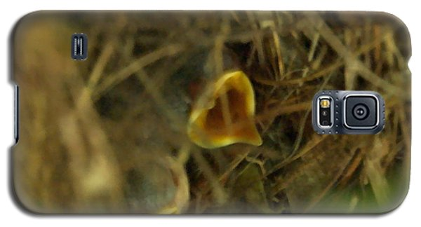 Nestlings Galaxy S5 Case