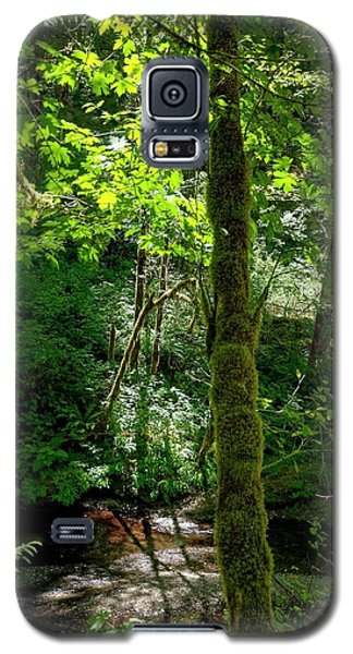 Nestucca River 3039 12x18 Galaxy S5 Case