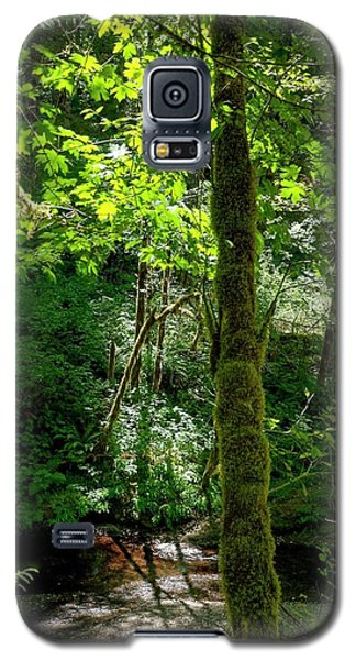Nestucca River 3039 12x18 Galaxy S5 Case by Jerry Sodorff
