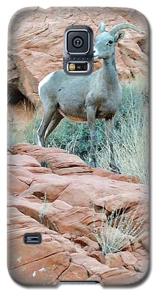 Nevada Rocks 31c Galaxy S5 Case