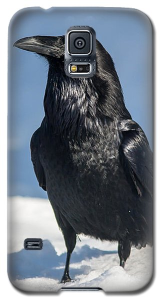 Nevermore Galaxy S5 Case by Jack Bell