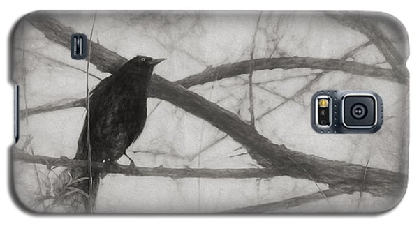Nevermore Galaxy S5 Case by Melinda Wolverson