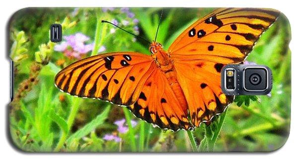 Windows From Heaven Orange Butterfly Galaxy S5 Case