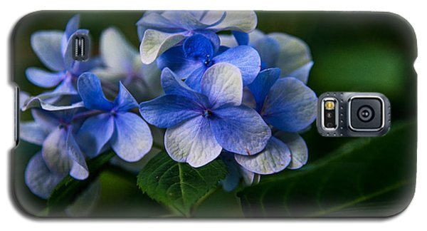 New Blues  Galaxy S5 Case by John Harding