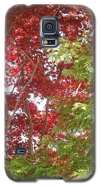 New England Autumn Globe Galaxy S5 Case